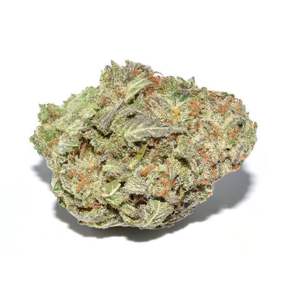 lemon skunk weed