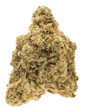 skywalker weed sativa