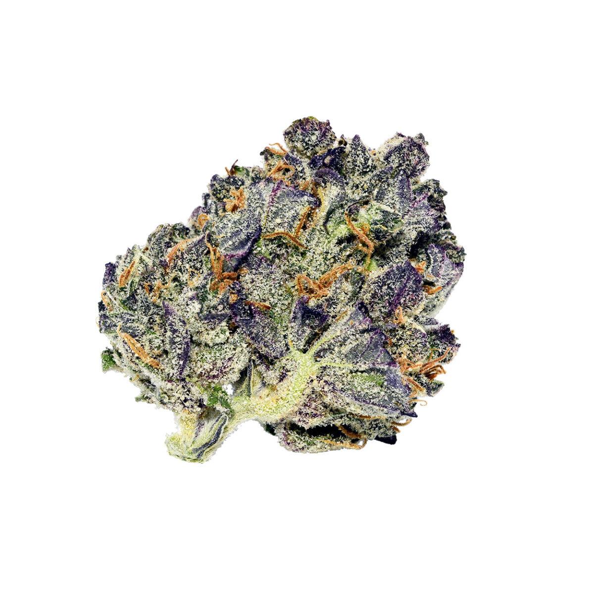 purple urkle og strain