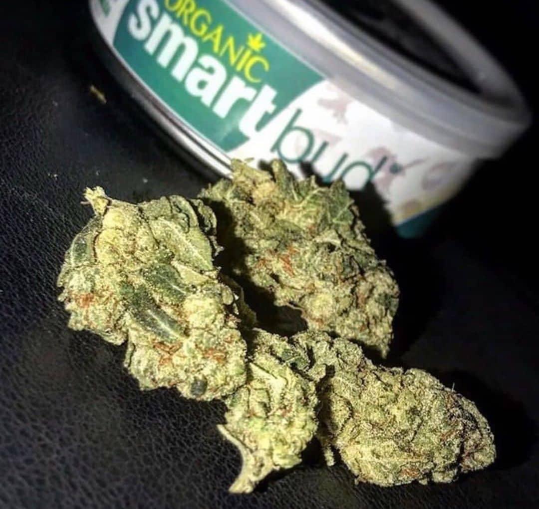 Buy smart bud can weed